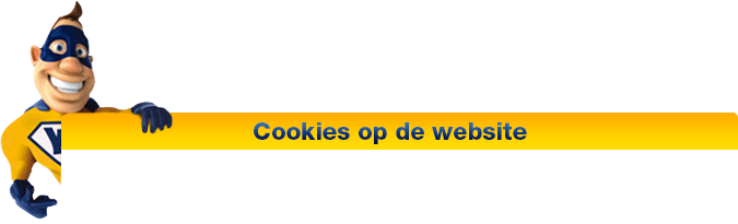 Cookies op de website